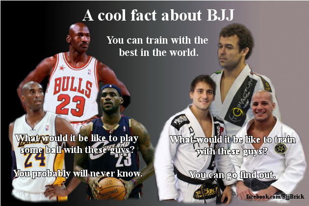 A cool fact about BJJ
