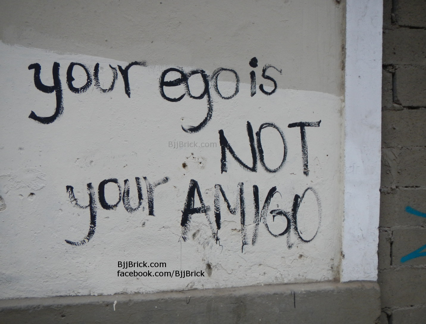 great line for BJJ. Your ego is not your amigo